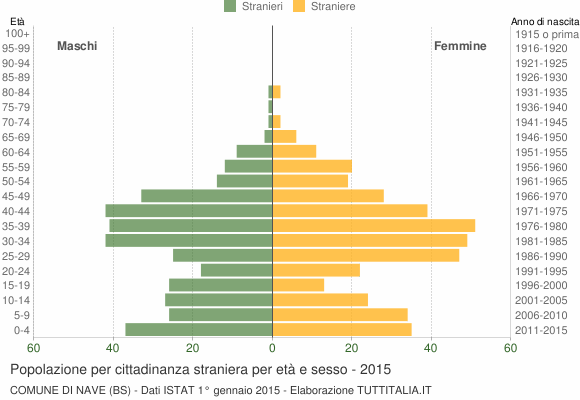 Grafico cittadini stranieri - Nave 2015