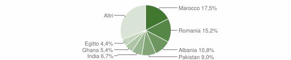 Grafico cittadinanza stranieri - Mazzano 2010