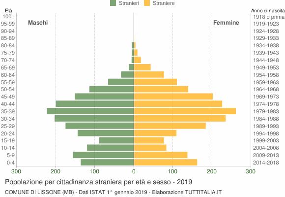 Grafico cittadini stranieri - Lissone 2019