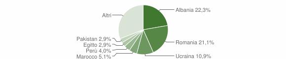 Grafico cittadinanza stranieri - Trivolzio 2019