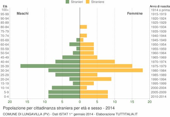 Grafico cittadini stranieri - Lungavilla 2014