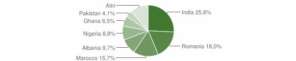 Grafico cittadinanza stranieri - Remedello 2011