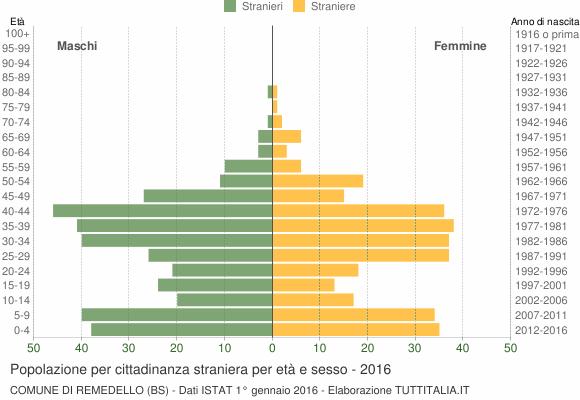 Grafico cittadini stranieri - Remedello 2016
