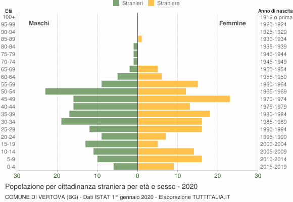 Grafico cittadini stranieri - Vertova 2020
