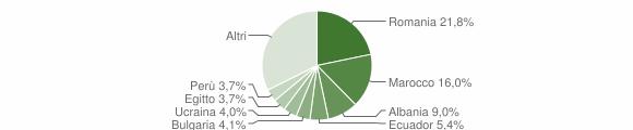 Grafico cittadinanza stranieri - Bernareggio 2019