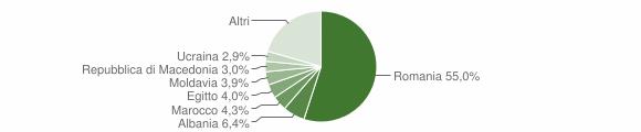 Grafico cittadinanza stranieri - Carugate 2019