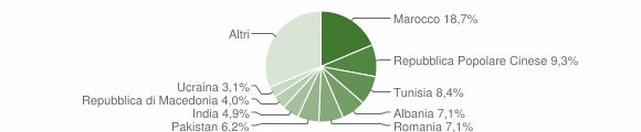 Grafico cittadinanza stranieri - Torbole Casaglia 2006