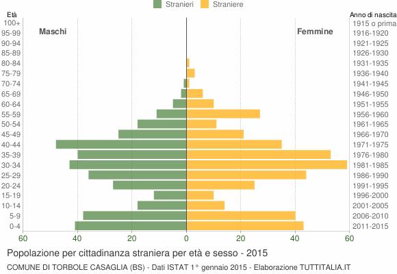 Grafico cittadini stranieri - Torbole Casaglia 2015