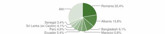 Grafico cittadinanza stranieri - Carnate 2013