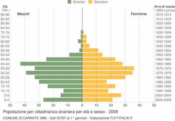 Grafico cittadini stranieri - Carnate 2009