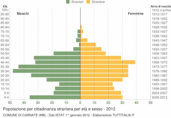 Grafico cittadini stranieri - Carnate 2012