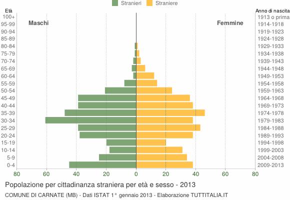 Grafico cittadini stranieri - Carnate 2013