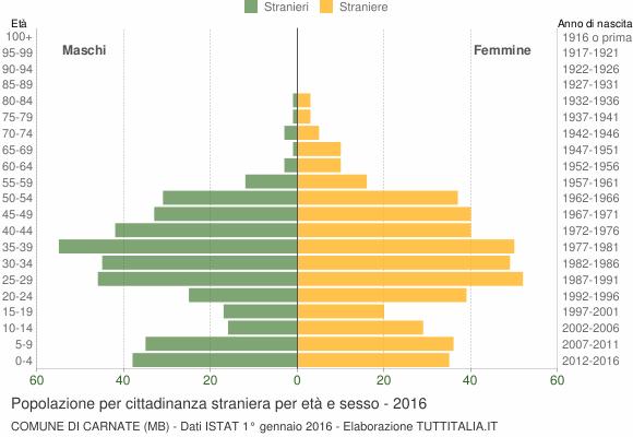 Grafico cittadini stranieri - Carnate 2016