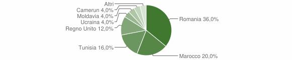 Grafico cittadinanza stranieri - Marmentino 2008