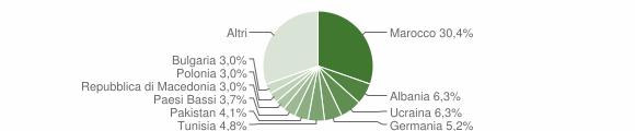 Grafico cittadinanza stranieri - Moniga del Garda 2007