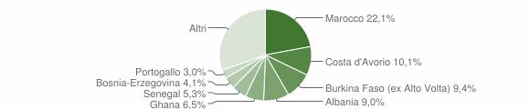 Grafico cittadinanza stranieri - Villanuova sul Clisi 2005
