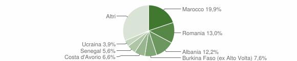 Grafico cittadinanza stranieri - Villanuova sul Clisi 2009