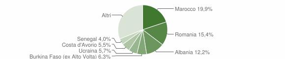 Grafico cittadinanza stranieri - Villanuova sul Clisi 2010