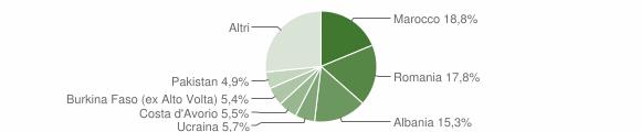 Grafico cittadinanza stranieri - Villanuova sul Clisi 2014