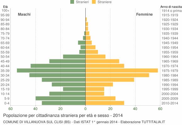 Grafico cittadini stranieri - Villanuova sul Clisi 2014