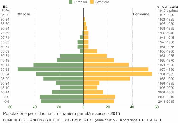 Grafico cittadini stranieri - Villanuova sul Clisi 2015
