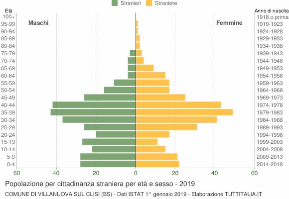 Grafico cittadini stranieri - Villanuova sul Clisi 2019