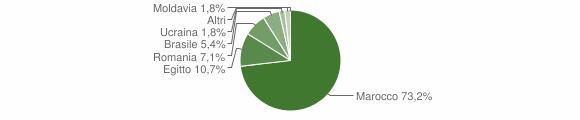 Grafico cittadinanza stranieri - Anfo 2011