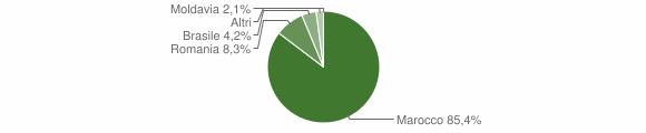 Grafico cittadinanza stranieri - Anfo 2012