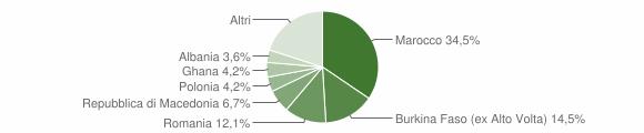 Grafico cittadinanza stranieri - Muscoline 2008