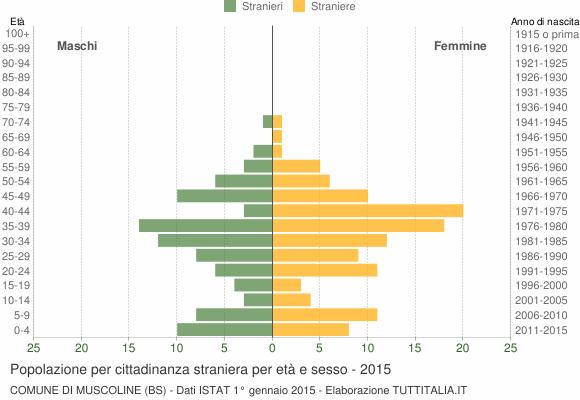 Grafico cittadini stranieri - Muscoline 2015