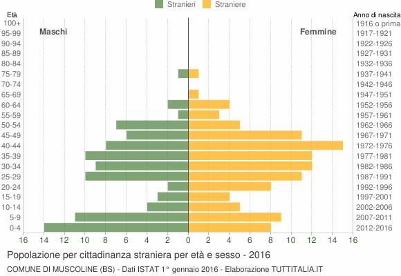 Grafico cittadini stranieri - Muscoline 2016