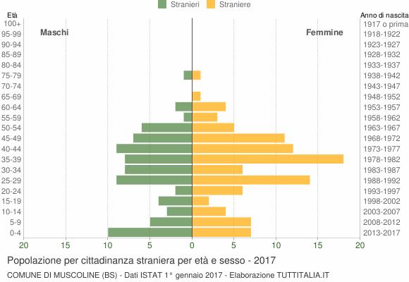 Grafico cittadini stranieri - Muscoline 2017