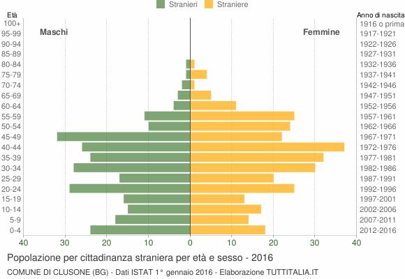 Grafico cittadini stranieri - Clusone 2016