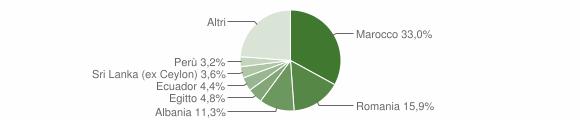 Grafico cittadinanza stranieri - Bellusco 2010