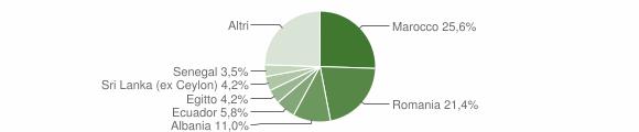 Grafico cittadinanza stranieri - Bellusco 2013
