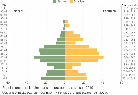 Grafico cittadini stranieri - Bellusco 2019