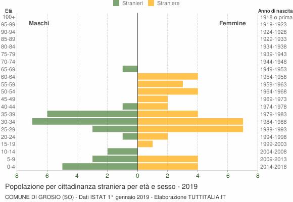 Grafico cittadini stranieri - Grosio 2019