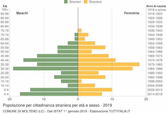 Grafico cittadini stranieri - Molteno 2019