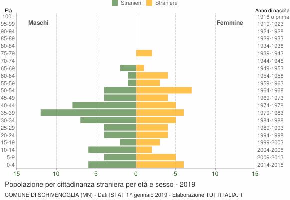 Grafico cittadini stranieri - Schivenoglia 2019