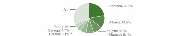 Grafico cittadinanza stranieri - Besate 2019