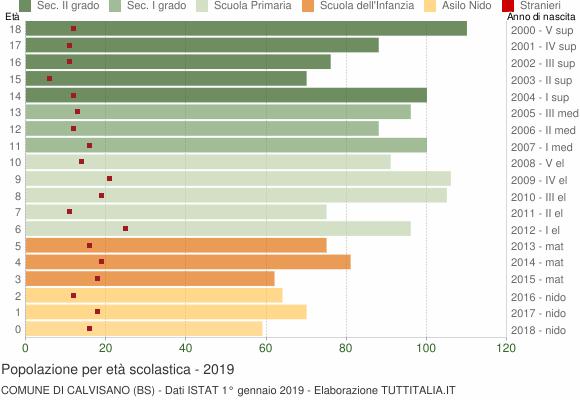 Grafico Popolazione in età scolastica - Calvisano 2019