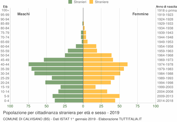 Grafico cittadini stranieri - Calvisano 2019