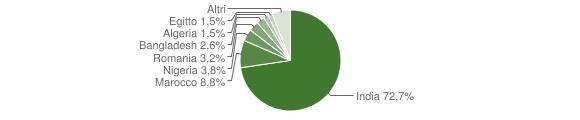 Grafico cittadinanza stranieri - Milzano 2010