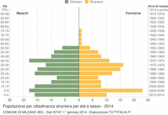 Grafico cittadini stranieri - Milzano 2014