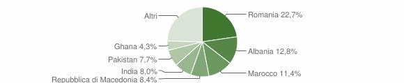 Grafico cittadinanza stranieri - Montichiari 2010