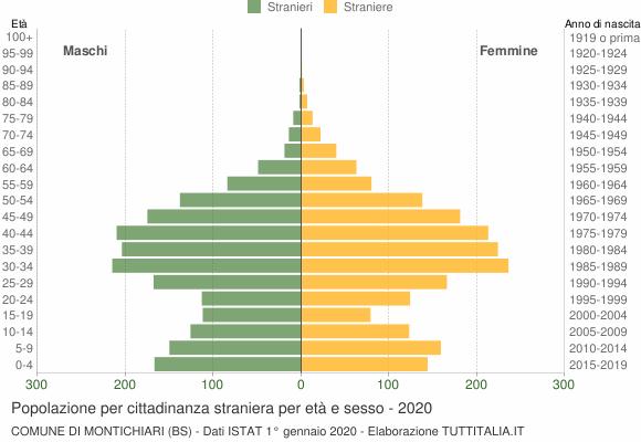 Grafico cittadini stranieri - Montichiari 2020