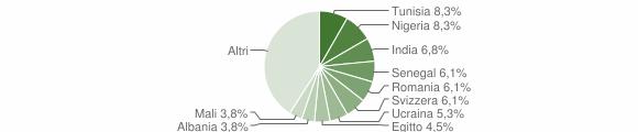 Grafico cittadinanza stranieri - Rodero 2019