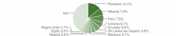 Grafico cittadinanza stranieri - Vedano al Lambro 2019
