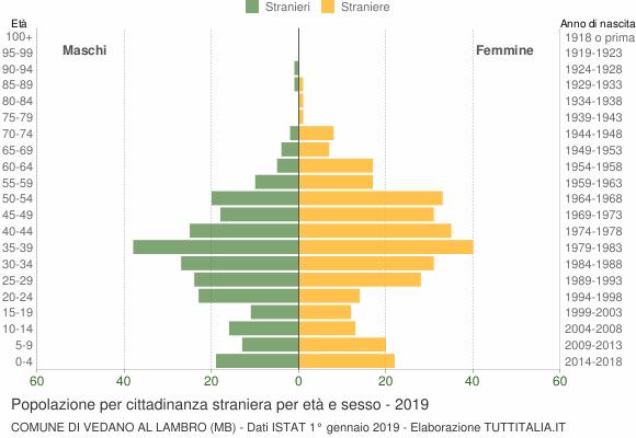 Grafico cittadini stranieri - Vedano al Lambro 2019