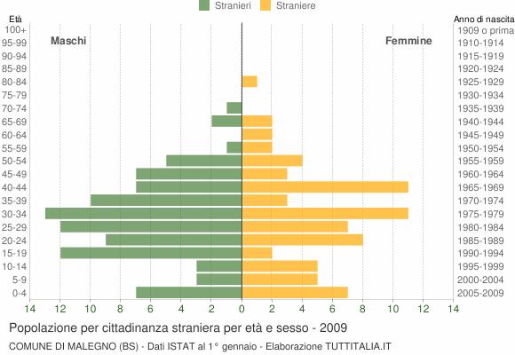Grafico cittadini stranieri - Malegno 2009